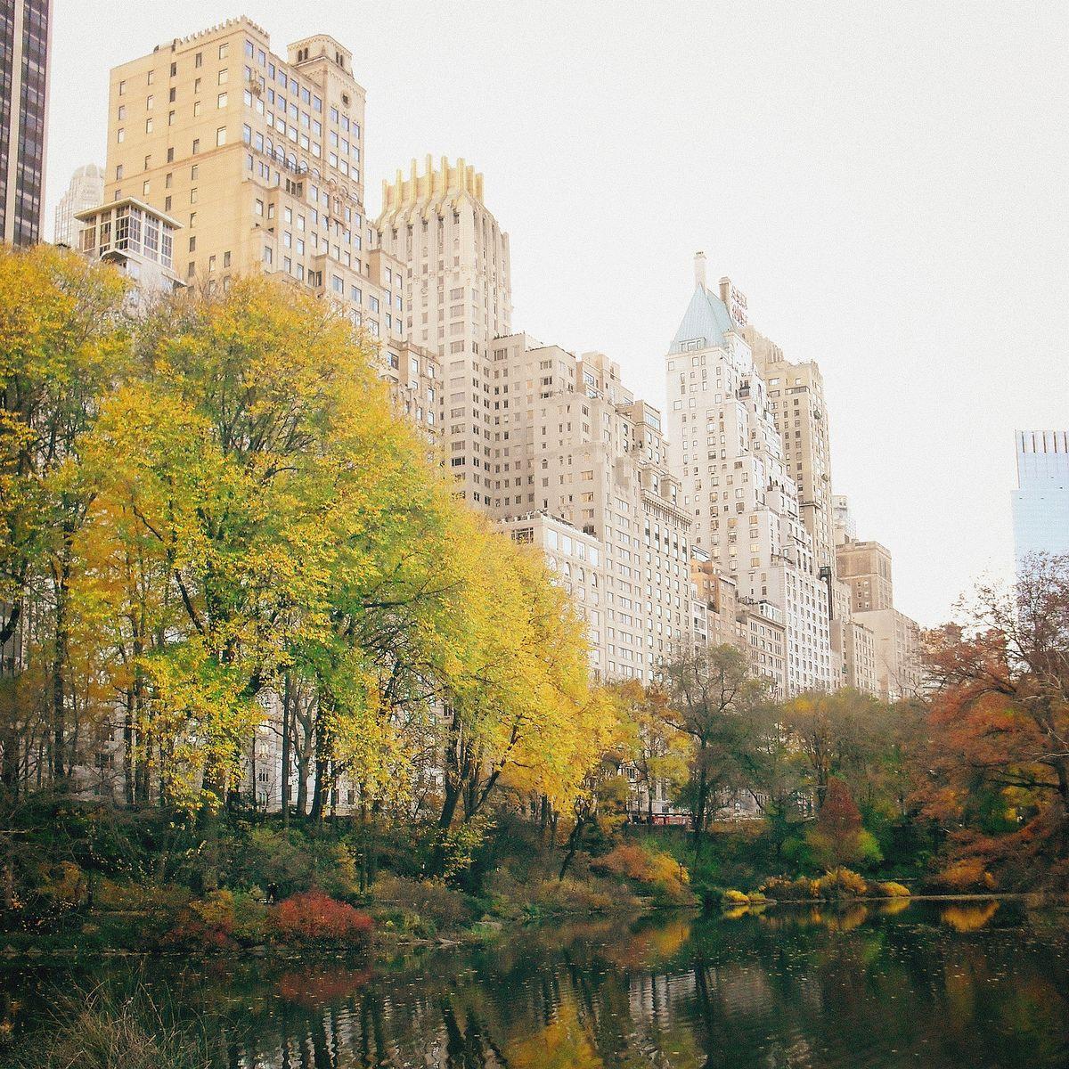 Buildings near Central Park