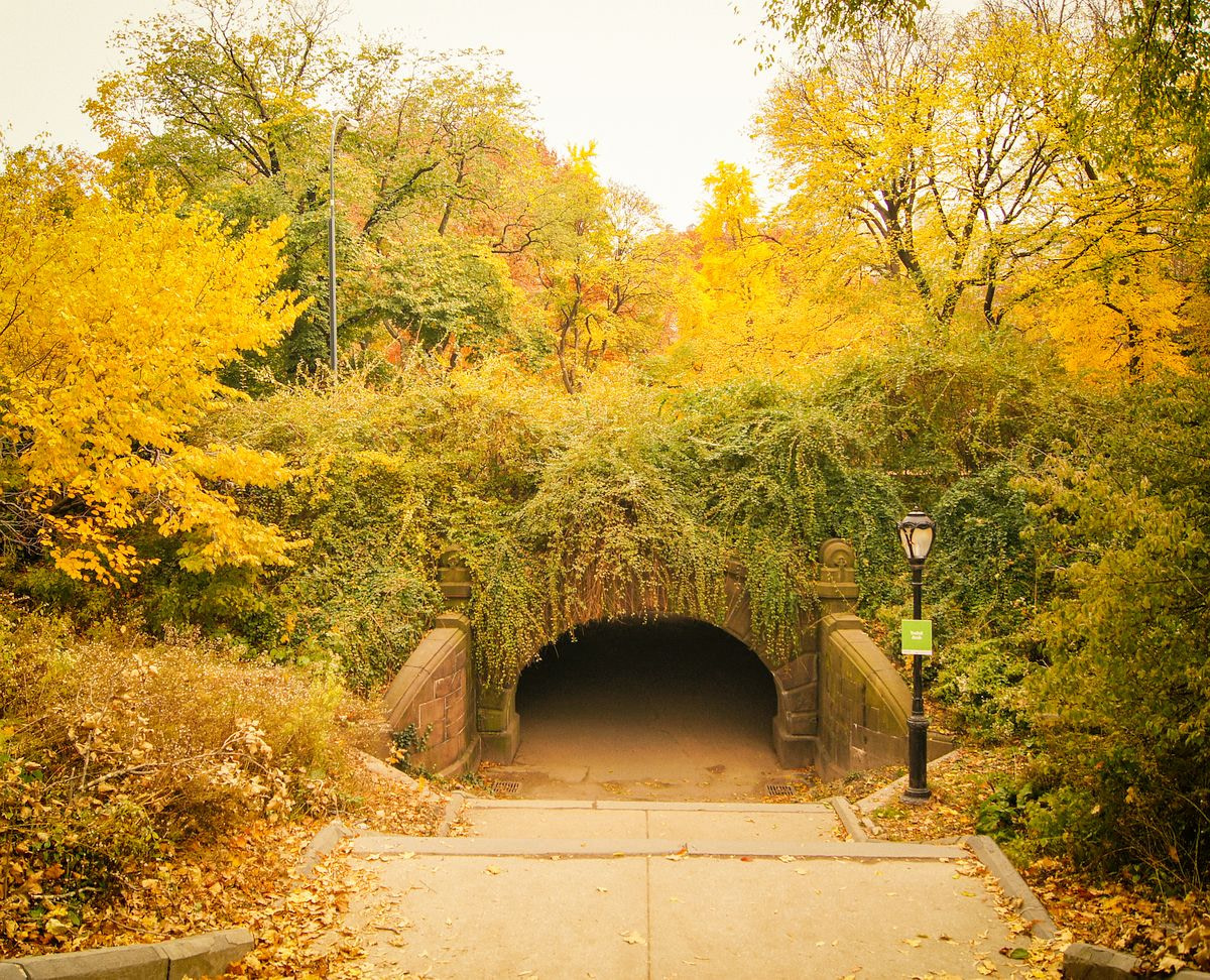 Trefoil Arch in Central Park