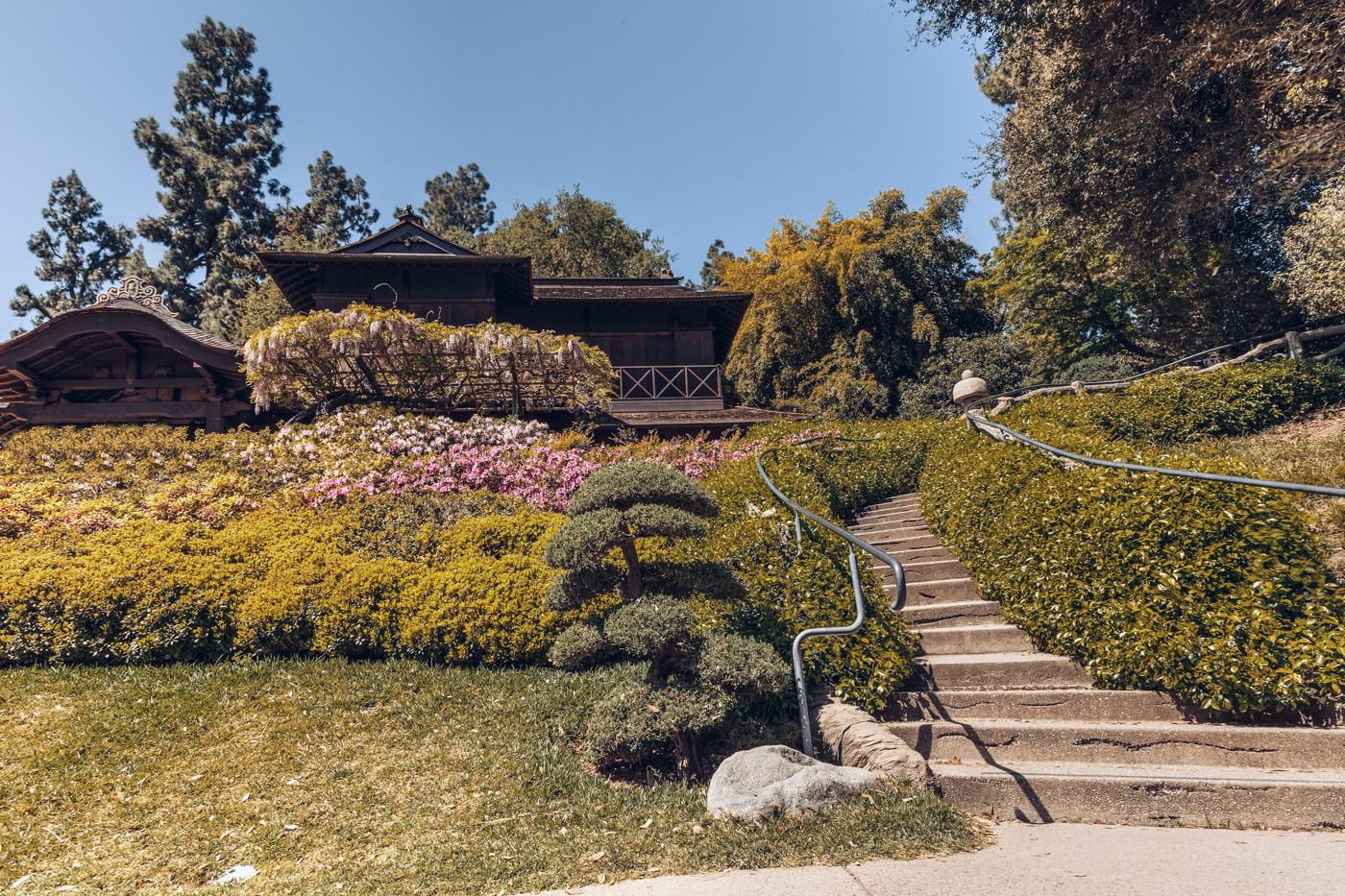 Botanical Gardens at Huntington Library