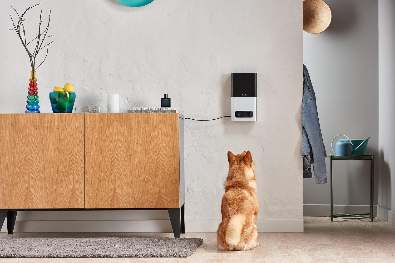Smart gadget for pets